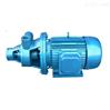 防爆低噪1W型单级漩涡泵