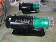 350QZB-85型軸流潛水泵