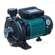 CP系列家用清水泵 臥式單級離心泵