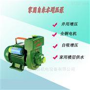 单相家用清水泵 凌霄牌微型手提式离心泵