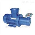 泵厂家出厂CWB型磁力驱动旋涡泵