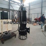 BQS100-35-22/N2寸4寸6寸8寸泥沙泵排沙泵*宜宾