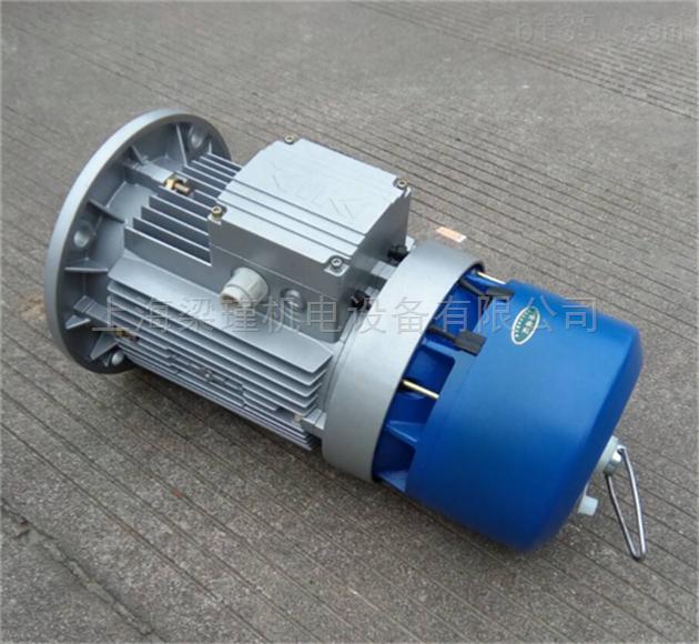 bma6312紫光bma三相异步刹车电机_高速电机-中国泵阀