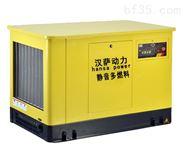 天然氣25KW發電機報價
