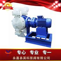 DBS-65PPF46工程塑料四氟电动隔膜泵