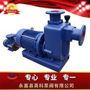 直联式自吸无堵塞排污泵