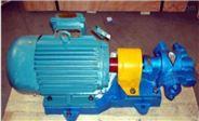 电动齿轮式输油泵 电动润滑油泵 电动燃油泵