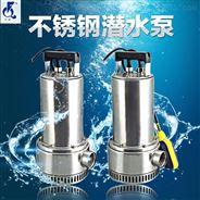 220V家用抽水泵 不锈钢潜水泵