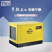 上海30kw小型靜音汽油發電機組