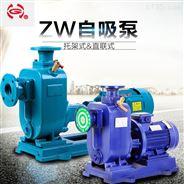 DN25生污废水排放泵 自吸式排污泵