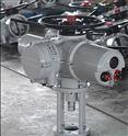 英国进口ROTORK电动执行器 执行机构