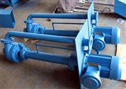 廠家直銷單雙管液下泵 多種款式長度定制